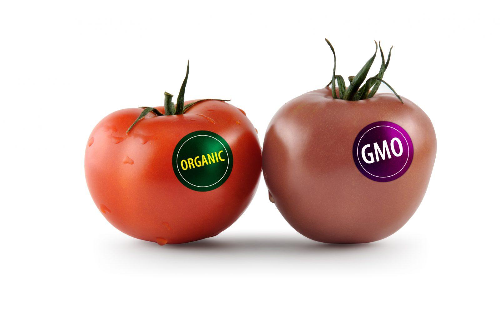 Kako razlikovati organsku od otrovne GMO hrane?