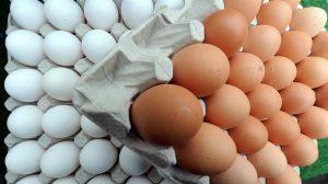 Šta kažu stručnjaci: Čuvati jaja u frižideru, ili ne?