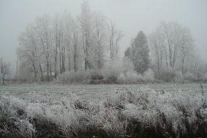 SPREMITE SE ZA 10 CENTIMETARA SNEGA Čeka nas najhladniji 31. oktobar u poslednjih 100 godina!