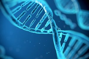 Naučnici otkrili način da obrišu genetske nedostatke!