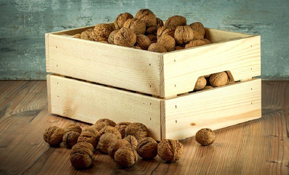 Orašasti plodovi su najdragoceniji saveznik ženskog zdravlja!