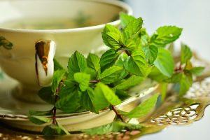 Čajevi za lečenje najčešćih bolesti