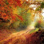 5 mesta koja treba da posetite ove jeseni