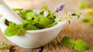 Biljke od kojih pravimo čajeve i ulja koji ublažavaju kašalj i smanjuju sekret iz nosa, a virusi ih baš i ne vole