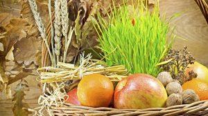 Pet trikova kojih se trebate pridržavati, kako bi zasadili Božićnu pšenicu