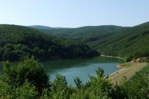 U Srbiji se nalazi najšumovitija planina na Balkanu, ali je zapostavljena